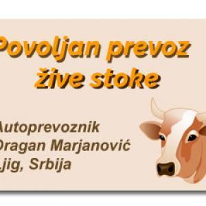 Prevoz žive stoke Autoprevoznik Dragan Marjanović Ljig