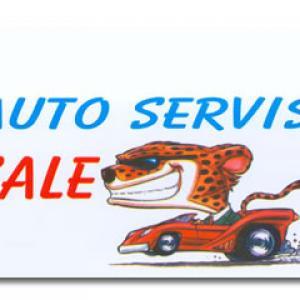 Auto servis Sale D&L