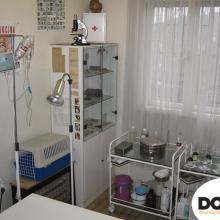 Veterinarska ambulanta Doki Vet Košutnjak 02
